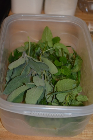 sage and lemonbalm