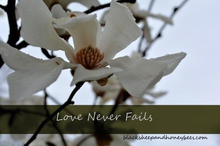 love never fails_edited-1